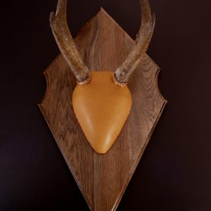 Antler Mount Kit- Timeless Deer - Bear Scents