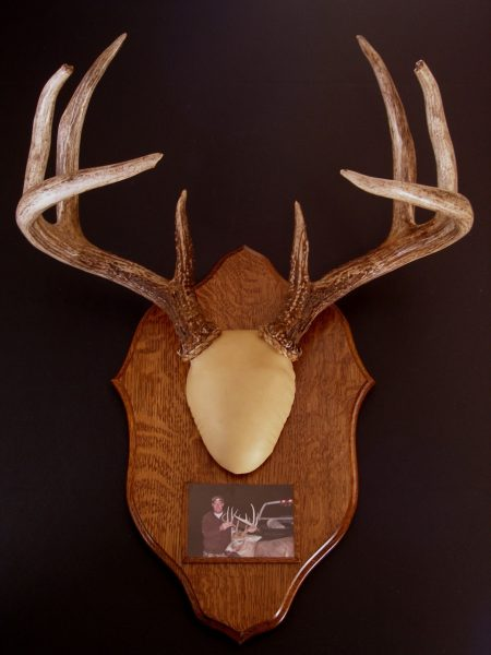 Antler Mount Kit- Traditions Deer - Bear Scents