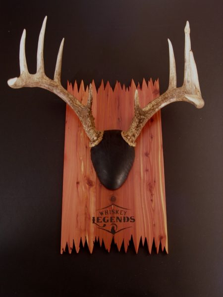 Antler Mount Kit- DeadEnd Deer - Bear Scents