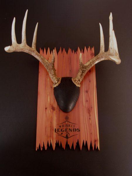 Deer antler mounting kit instructions - Antler Mount Kit Deadend Deer