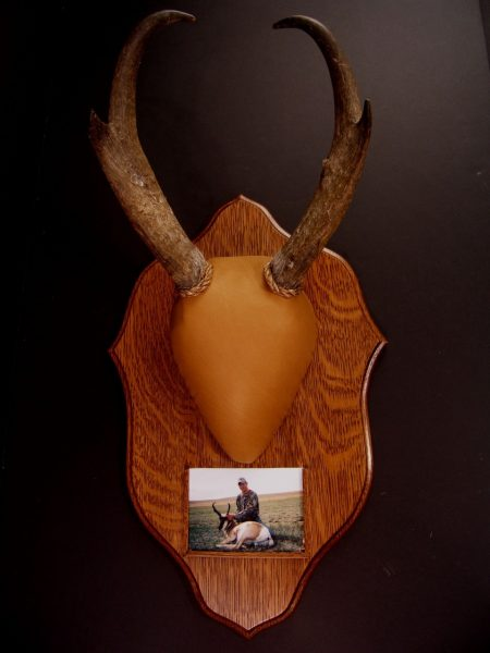 Traditions Antelope Antler Mount Kit - Bear Scents