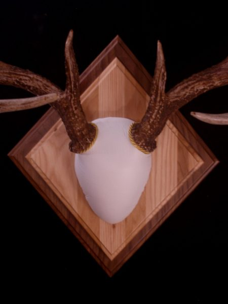 Antler Mount Kit- Overlay Deer - Bear Scents