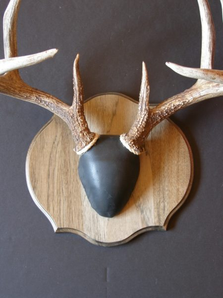 Antler Mount Kit- Timeless Deer - Bear Scents
